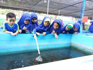 Rumah Aneka Ikan